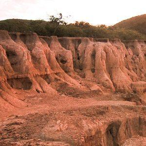 La erosión se produce por falta de vegetación en el suelo