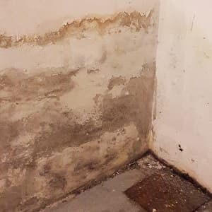 Eliminar humedades en paredes interiores